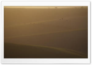 Winter on the South Downs,...