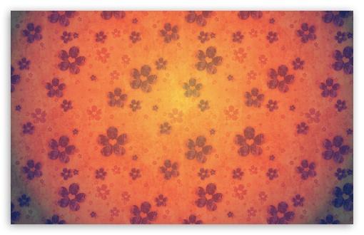 Download Orange Flowers UltraHD Wallpaper