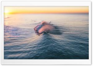 Surfing, Wave, Pacific Ocean,...