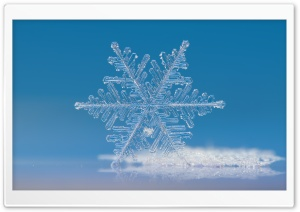 Beautiful Snowflake Photography