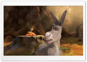 Donkey, Shrek Forever After
