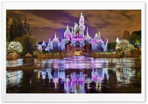 Sleeping Beauty Castle...