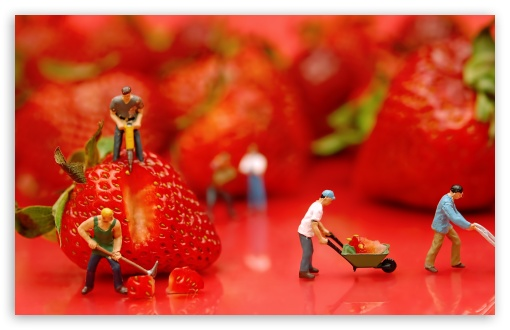 Download Strawberries UltraHD Wallpaper