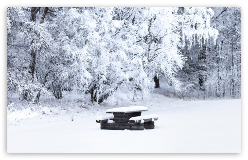 Download Snow Covered Picnic Table, Bench, Trees, Winter UltraHD Wallpaper