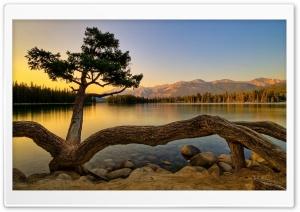 Amazing View Of Lake