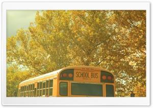 School Bus Nostalgia