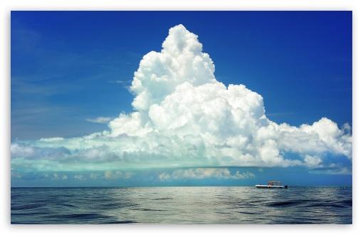 Download Cumulus Clouds Above the Sea UltraHD Wallpaper