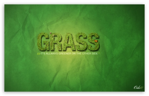 Download Grass is Always Greener on the other side UltraHD Wallpaper