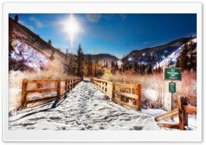 Aspen Trail, Winter