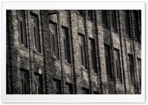 Brick Building Monochrome