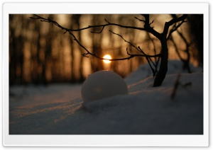 A Snowball In Snow