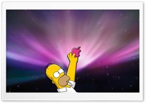 Homer Simpson Donut