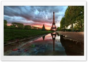 Paris Reflections