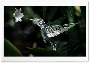 Humming Bird Made From Watch...