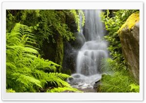 Waterfall, Kubota Garden,...