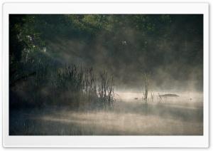 Morning Mist, Finland