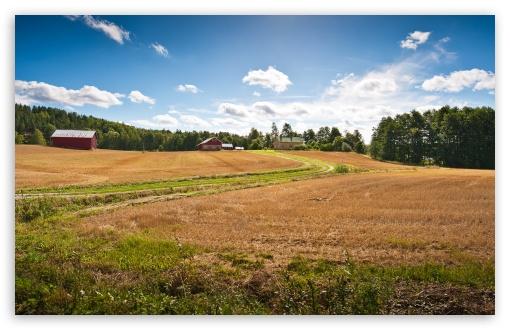 Download Farm Fields UltraHD Wallpaper