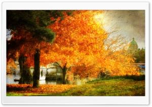 A Dreamy Fall