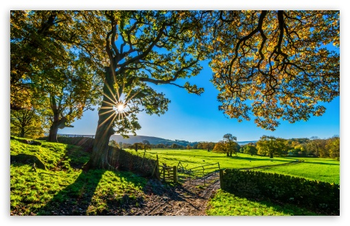 Download Beautiful England Nature Countryside Scenery UltraHD Wallpaper