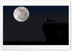Wolf And The Full Moon
