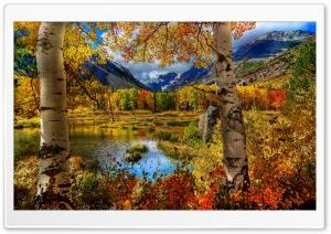 Perfect Autumn Scenery