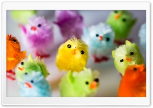 Multi Colored Easter Chicks