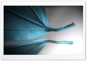 Turquoise Leaf