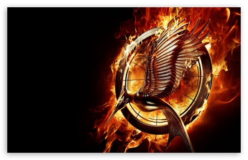 Download The Hunger Games Catching Fire Movie UltraHD Wallpaper