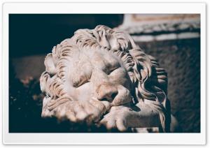Sleeping Lion Sculpture