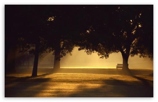 Download Beautiful Sunset Light UltraHD Wallpaper