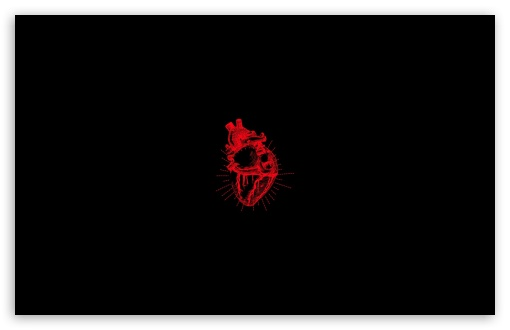 Download Heart UltraHD Wallpaper