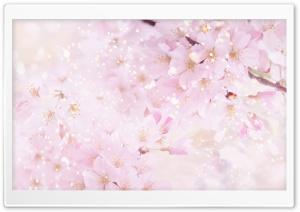 Magic Blooming Tree