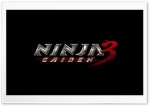 Ninja Gaiden 3 Video Game