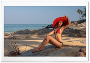 Beach Model