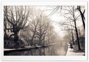 City Mist, Winter