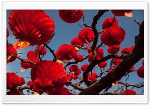 Red Paper Lanterns Tree