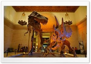 Los Angeles, Natural History...