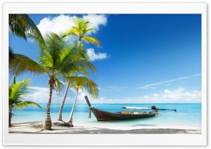Tropical Traditional Wooden Boat