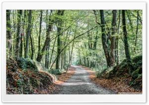 Walking the Path Fageda den...