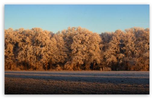 Download Panoramic View Of Nature UltraHD Wallpaper