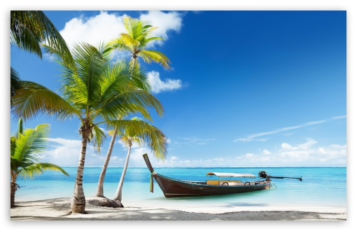 Download Tropical Traditional Wooden Boat UltraHD Wallpaper