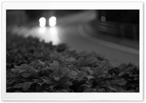 Street at night Black and White