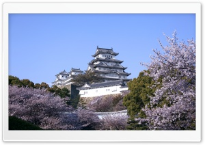 Himeji Castle And Cherry...