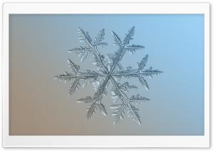 Light Blue Snowflake Background