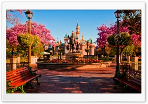 Disneylands Hub
