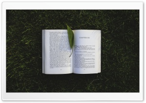 Reading A Book Outside