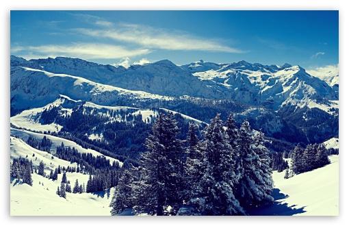 Download Winter Scenery UltraHD Wallpaper
