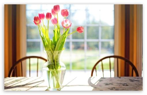 Download Spring Fresh Cut Tulips Flowers in Vase UltraHD Wallpaper