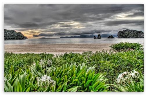 Download Wild Beach HDR UltraHD Wallpaper