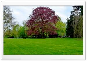 May - Nature
